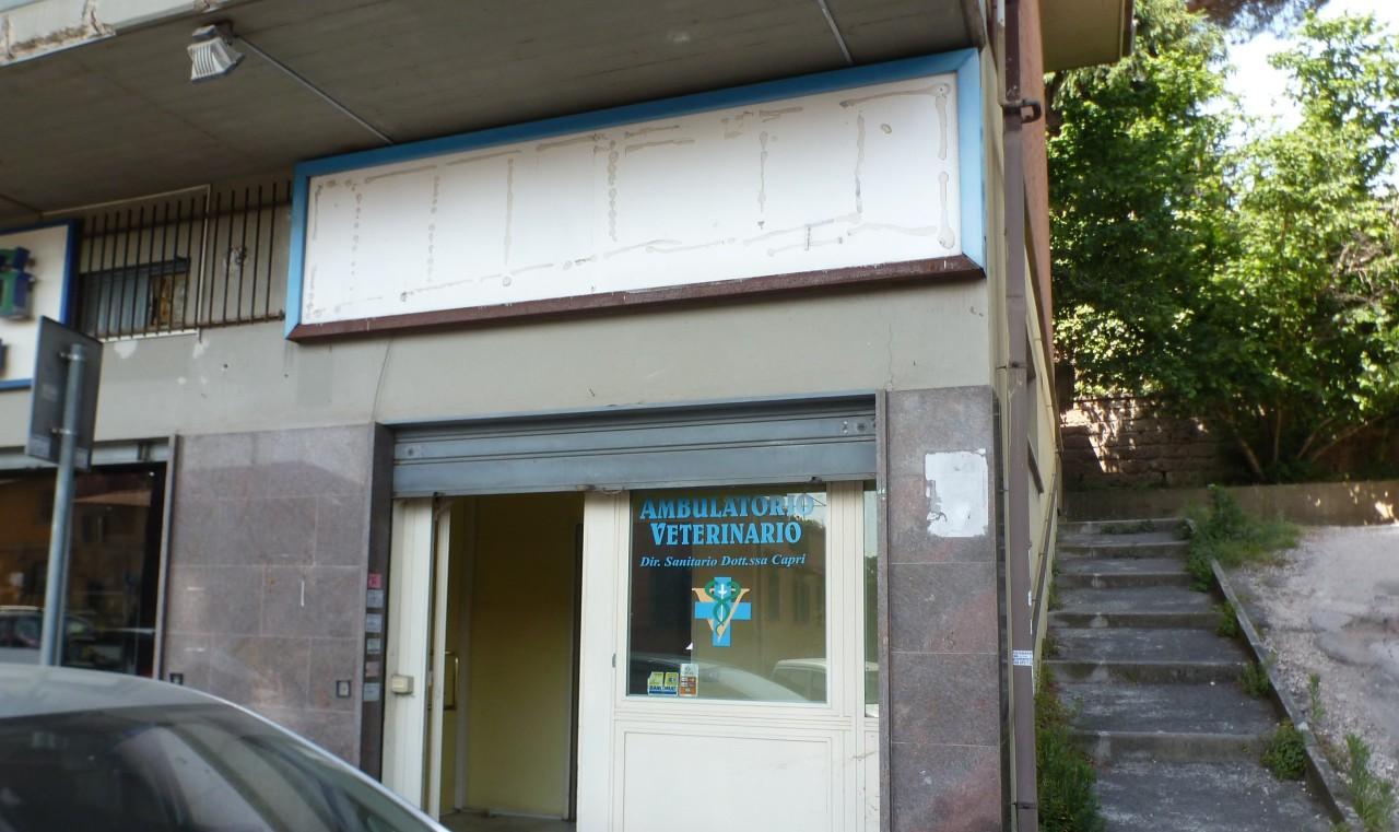 Locale commerciale - 1 Vetrina a Grottaferrata Rif. 10519420