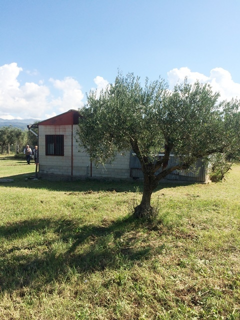 Rustico / Casale in vendita a San Gregorio da Sassola, 2 locali, prezzo € 48.000 | CambioCasa.it
