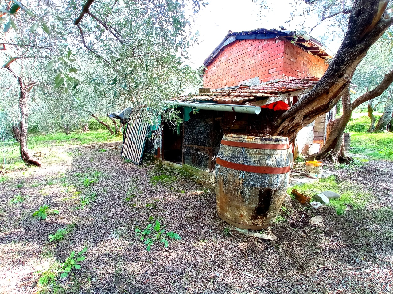 Terreno Agricolo in vendita a Santo Stefano di Magra, 9999 locali, prezzo € 55.000 | PortaleAgenzieImmobiliari.it