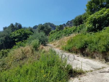 Agricolo, Ventimiglia - Sant'Anna