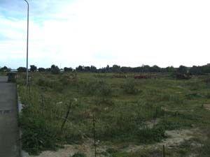 Terreno in vendita Rif. 4140057