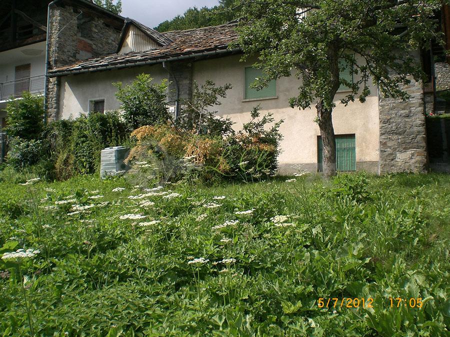 Rustico / Casale in discrete condizioni in vendita Rif. 4153942