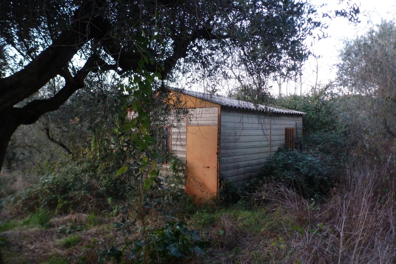 Agricolo - Prato a Marino Rif. 12011650