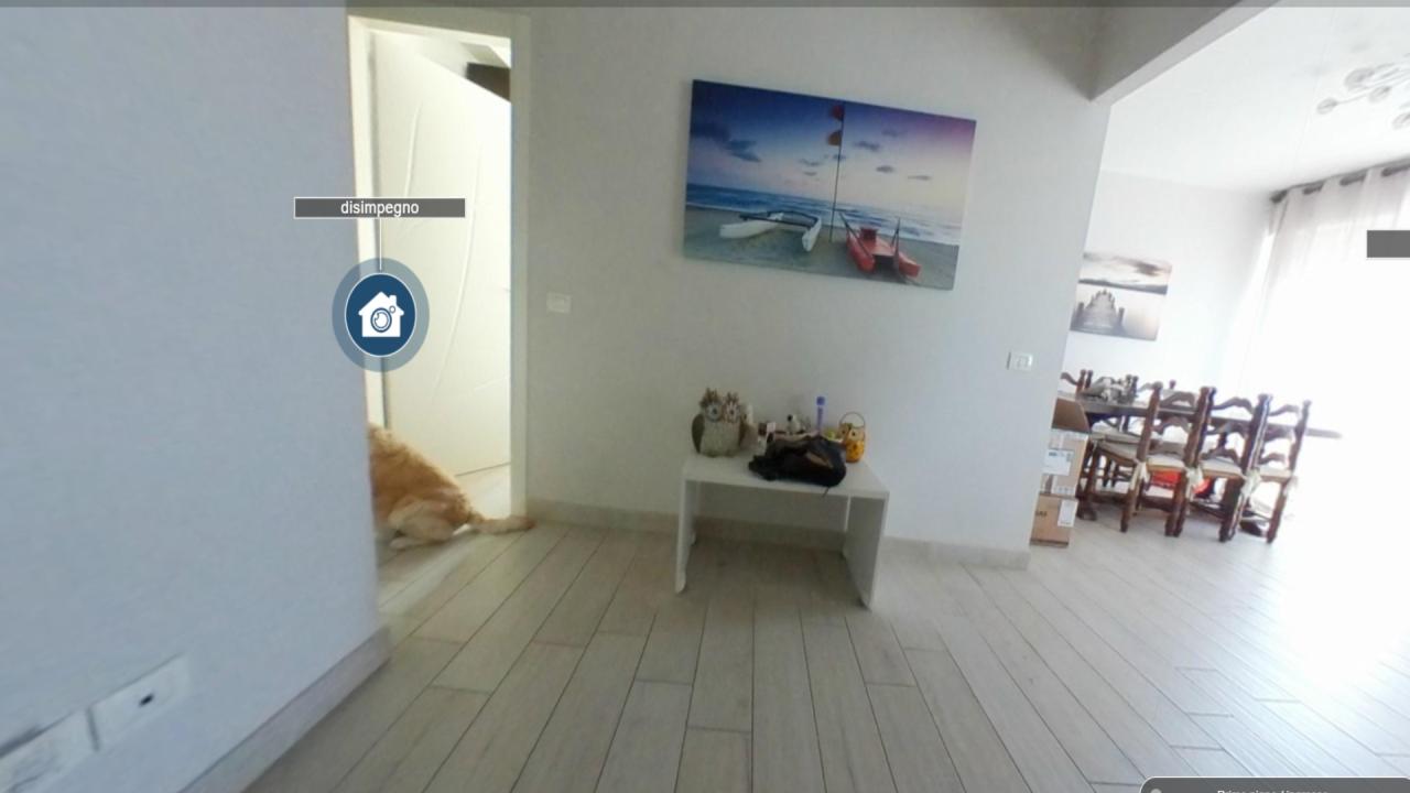 Appartamento in ottime condizioni arredato in affitto Rif. 10034689