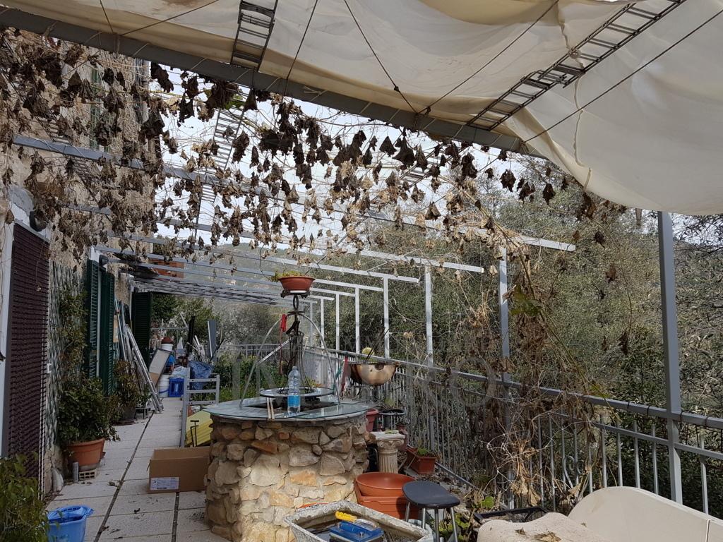 Appartamento in vendita a Ventimiglia, 3 locali, prezzo € 125.000 | PortaleAgenzieImmobiliari.it