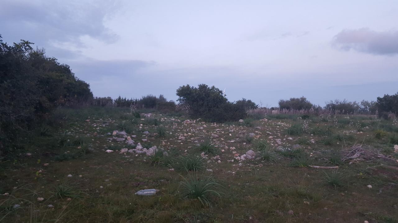 Terreno Agricolo in vendita a Siracusa, 9999 locali, prezzo € 35.000 | PortaleAgenzieImmobiliari.it