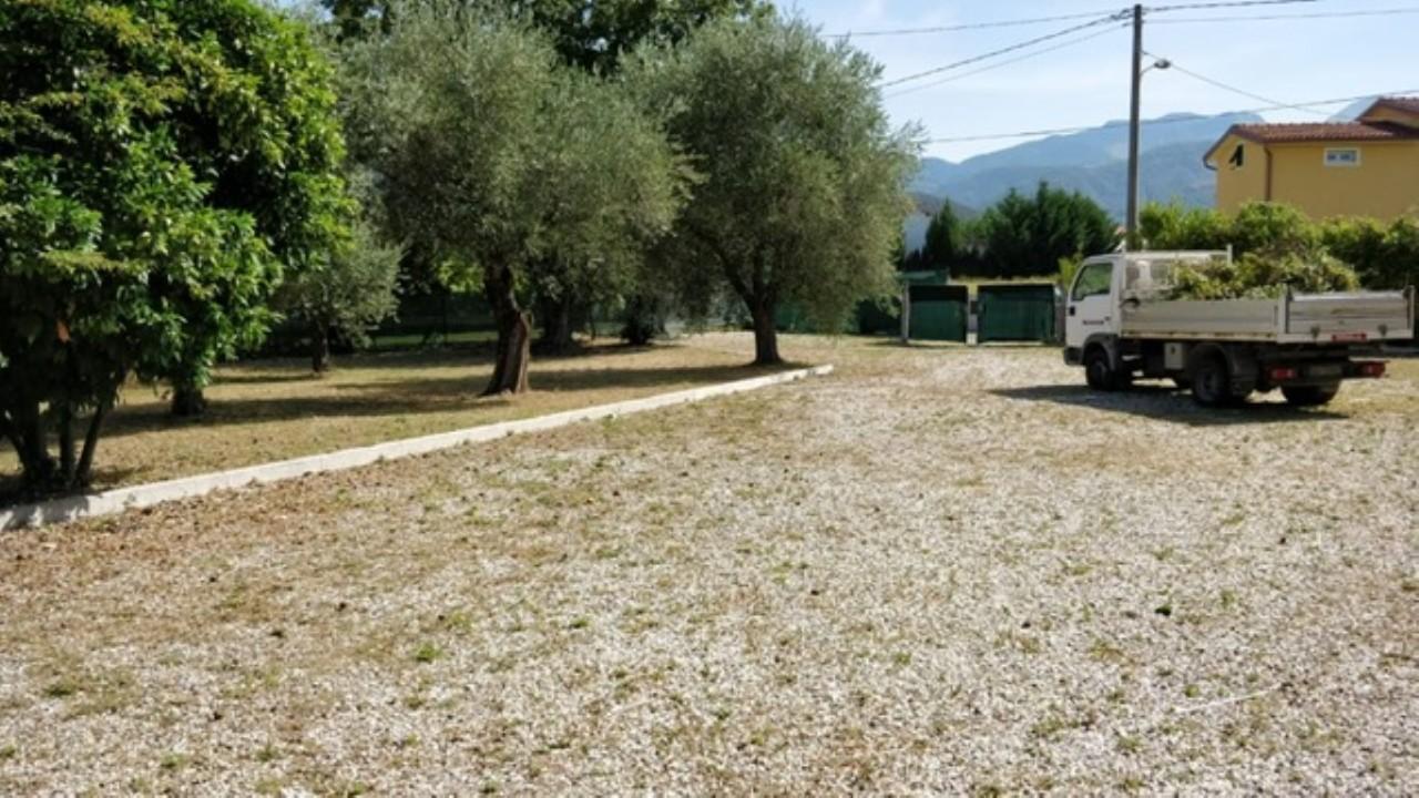 Agricolo - Uliveto a Castelnuovo Magra