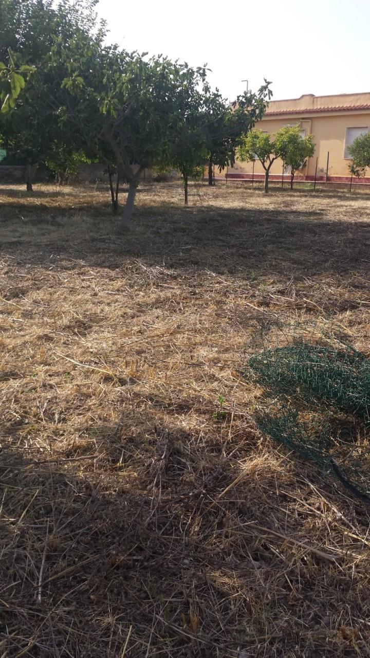Terreno in buone condizioni in vendita Rif. 7170144