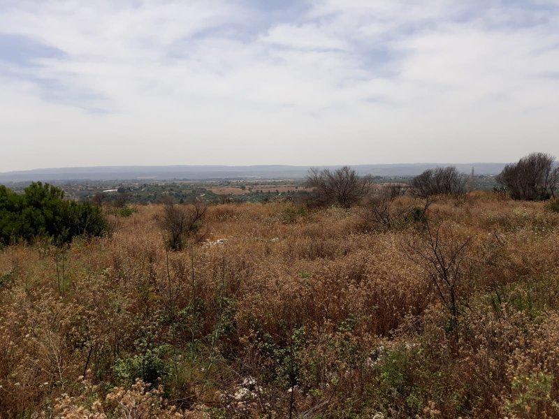 Terreno in vendita Rif. 4140362