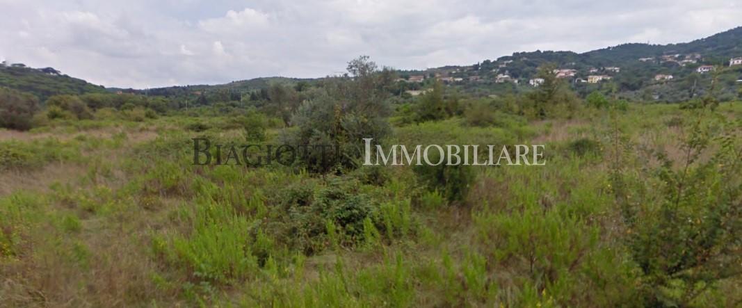 Terreno in vendita Rif. 7779360