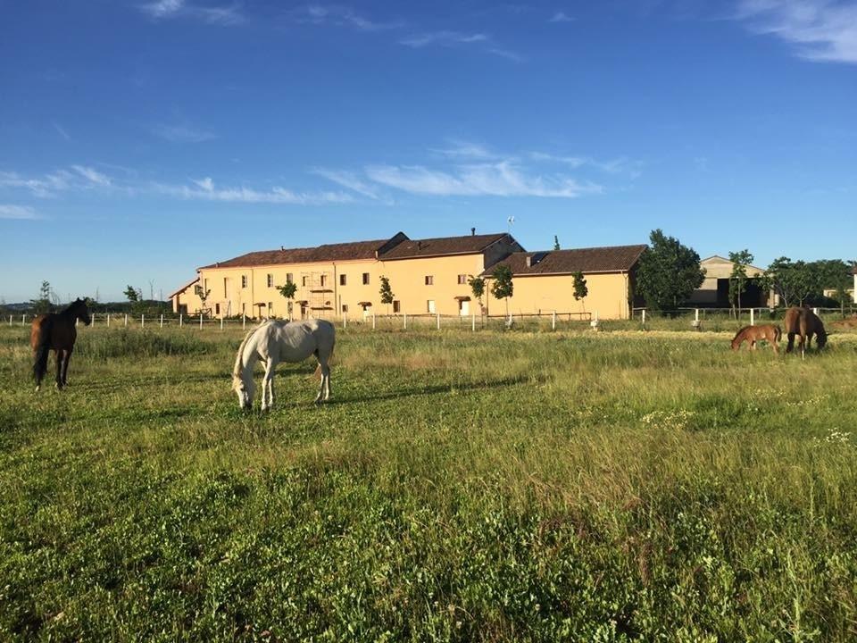 Agriturismo a Pozzolo Formigaro Rif. 9650592