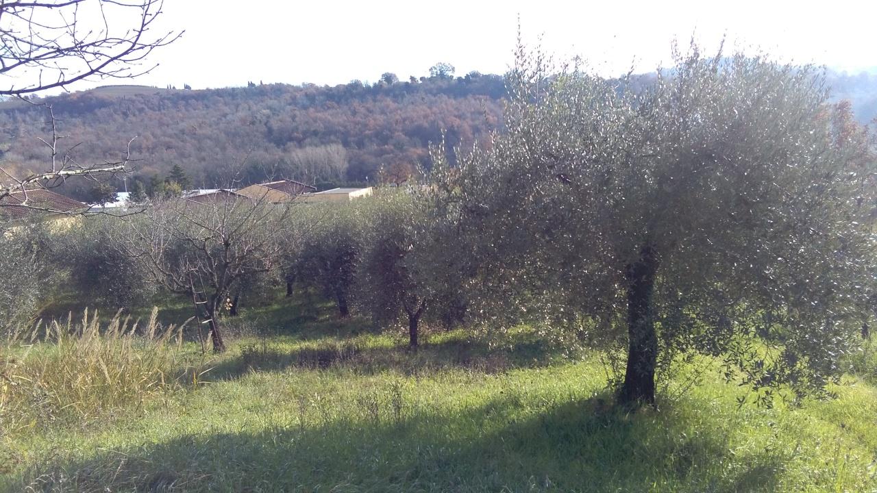 Terreno Agricolo in vendita a Amelia, 9999 locali, prezzo € 30.000 | CambioCasa.it