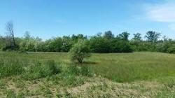 Terreno agricolo in Vendita a Siracusa, zona Isola Sacramento, 55'000€, 28000 m²
