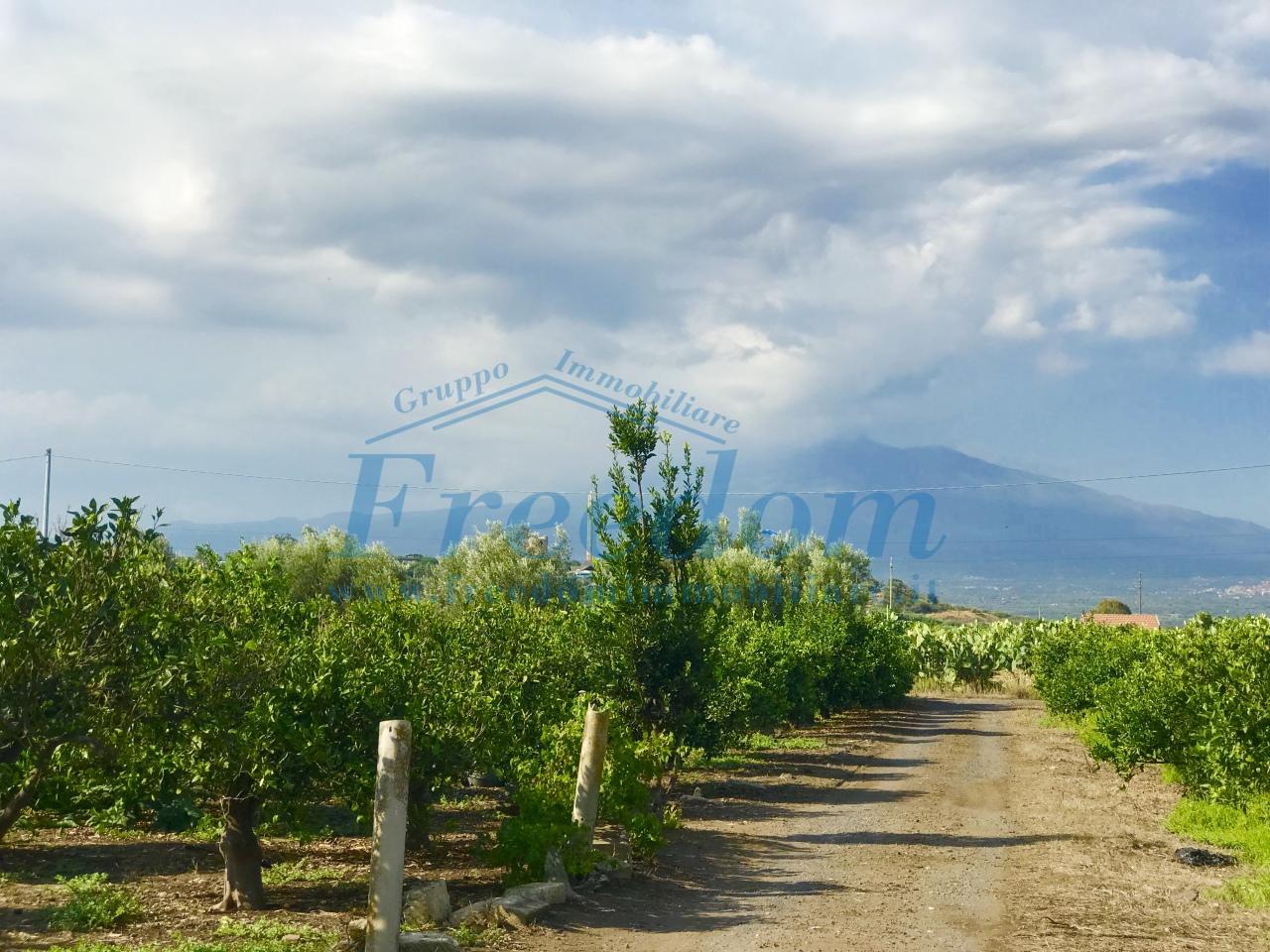 Agricolo - Area verde a Belpasso Rif. 8184436