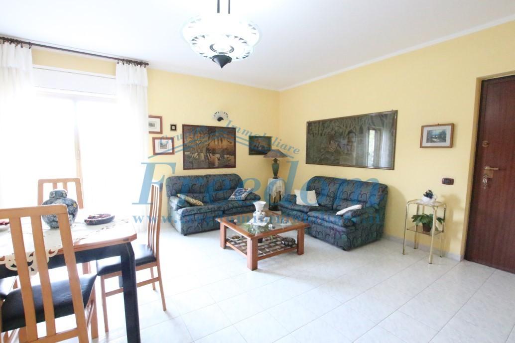 Appartamento in buone condizioni in affitto Rif. 8813715