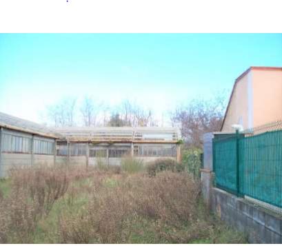 Capannone / Fondo - Industriale/Artigianale a Luni Rif. 12283432