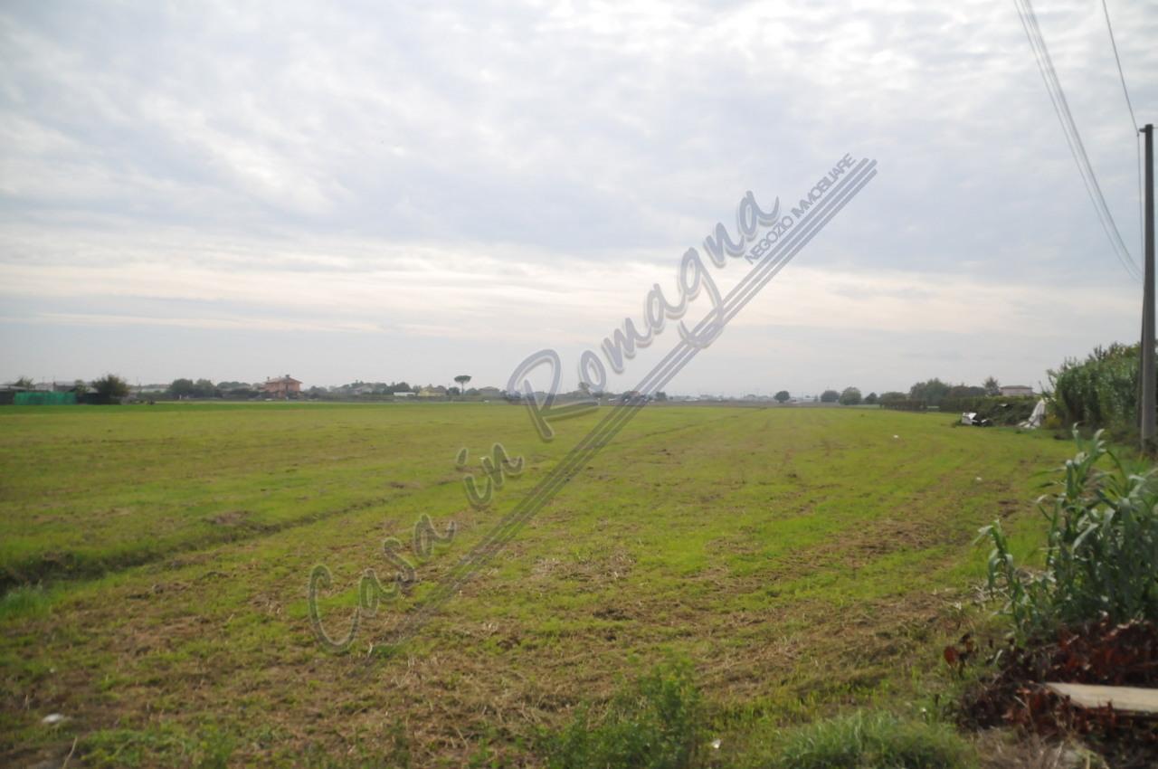 Agricolo - Seminativo a Cesenatico Rif. 11003102