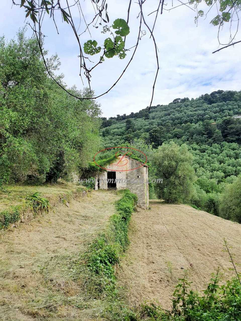 Terreno Agricolo in vendita a Diano Castello, 9999 locali, prezzo € 80.000 | PortaleAgenzieImmobiliari.it