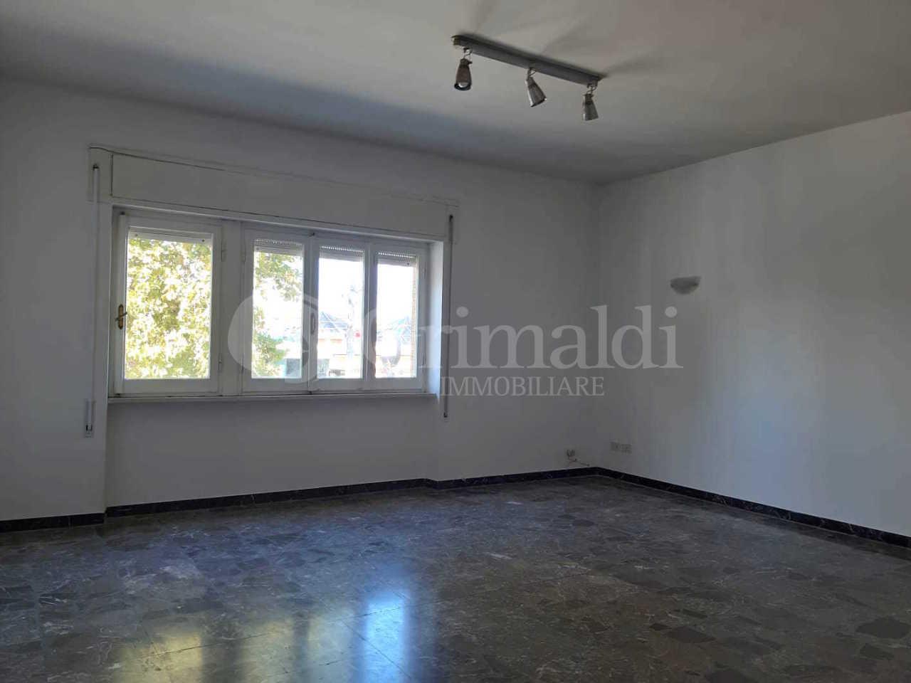 Appartamento in buone condizioni in affitto Rif. 11306536