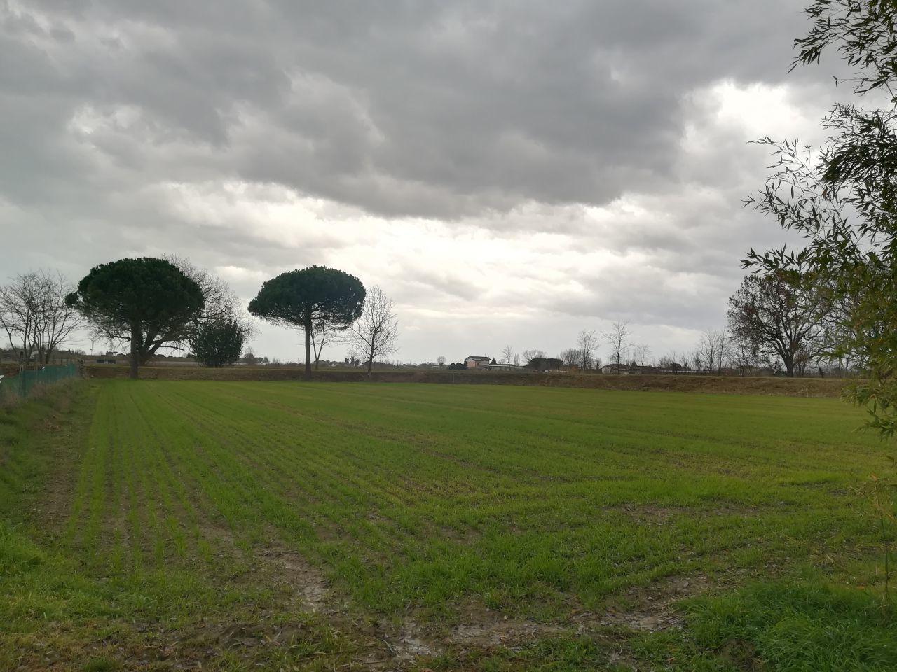 Agricolo  Bellaria-Igea Marina TERR-36