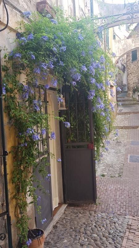 Locale commerciale - 1 Vetrina a Sanremo
