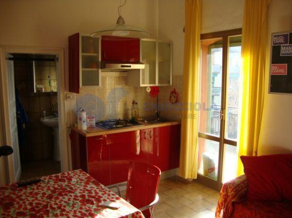 Bilocale in buone condizioni arredato in affitto Rif. 11365559