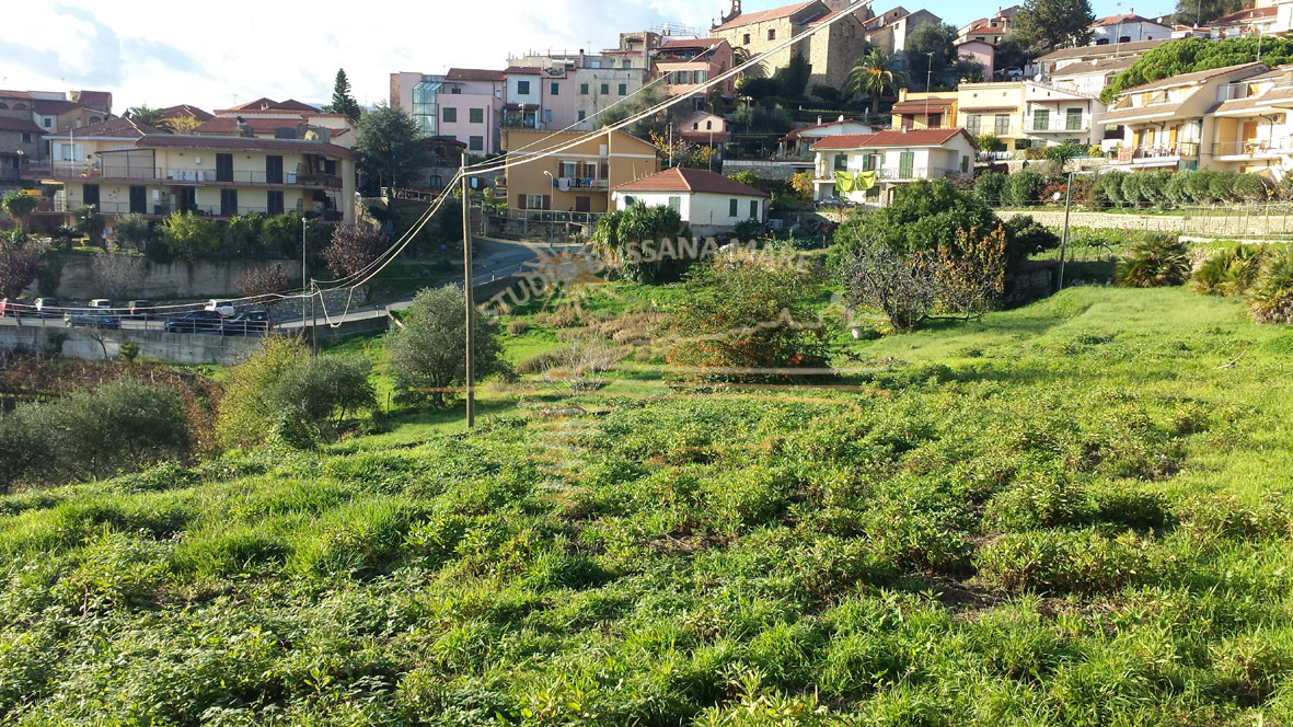Agricolo - Pompeiana