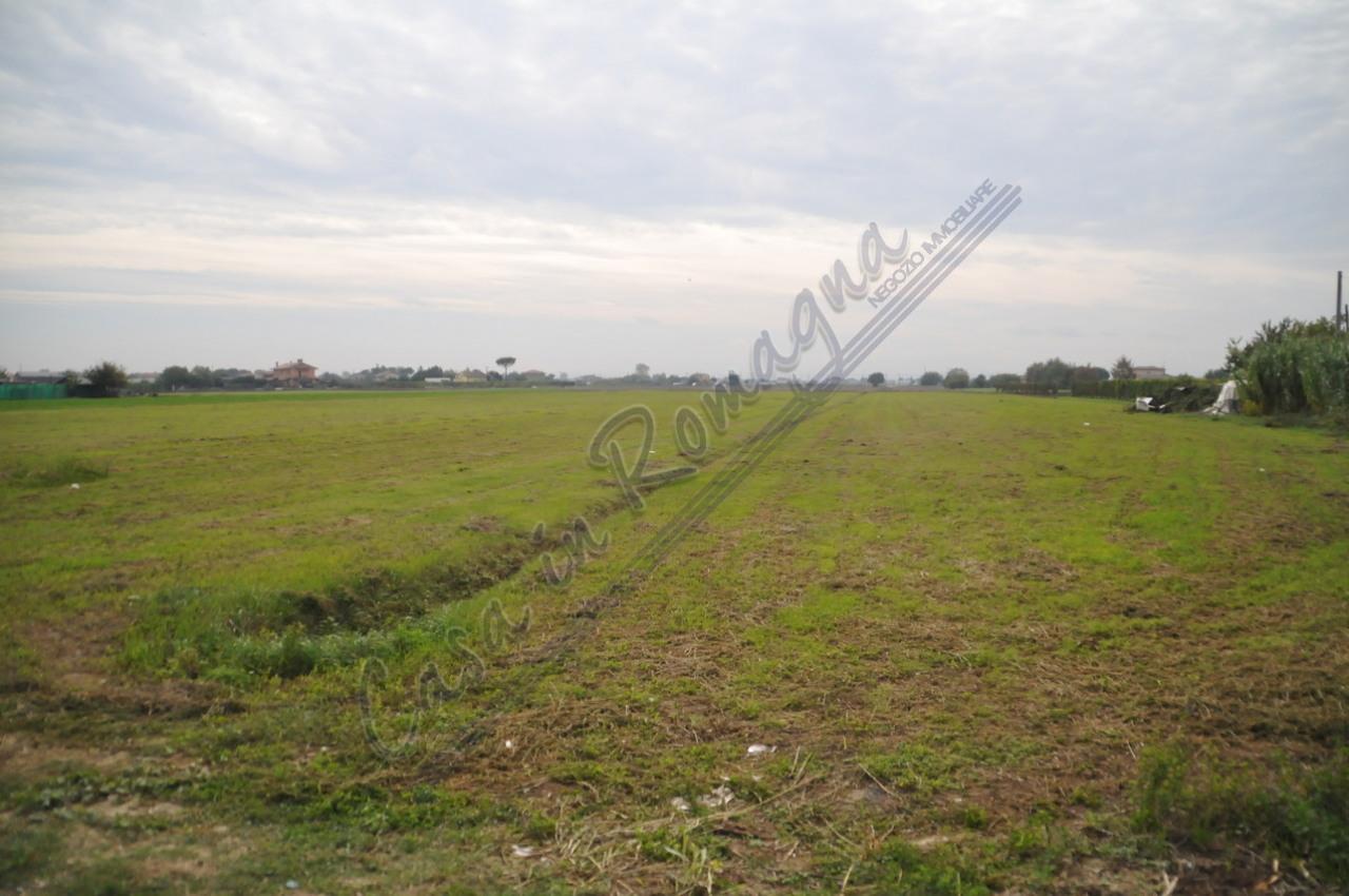 Agricolo - Seminativo a Cesenatico Rif. 11527379