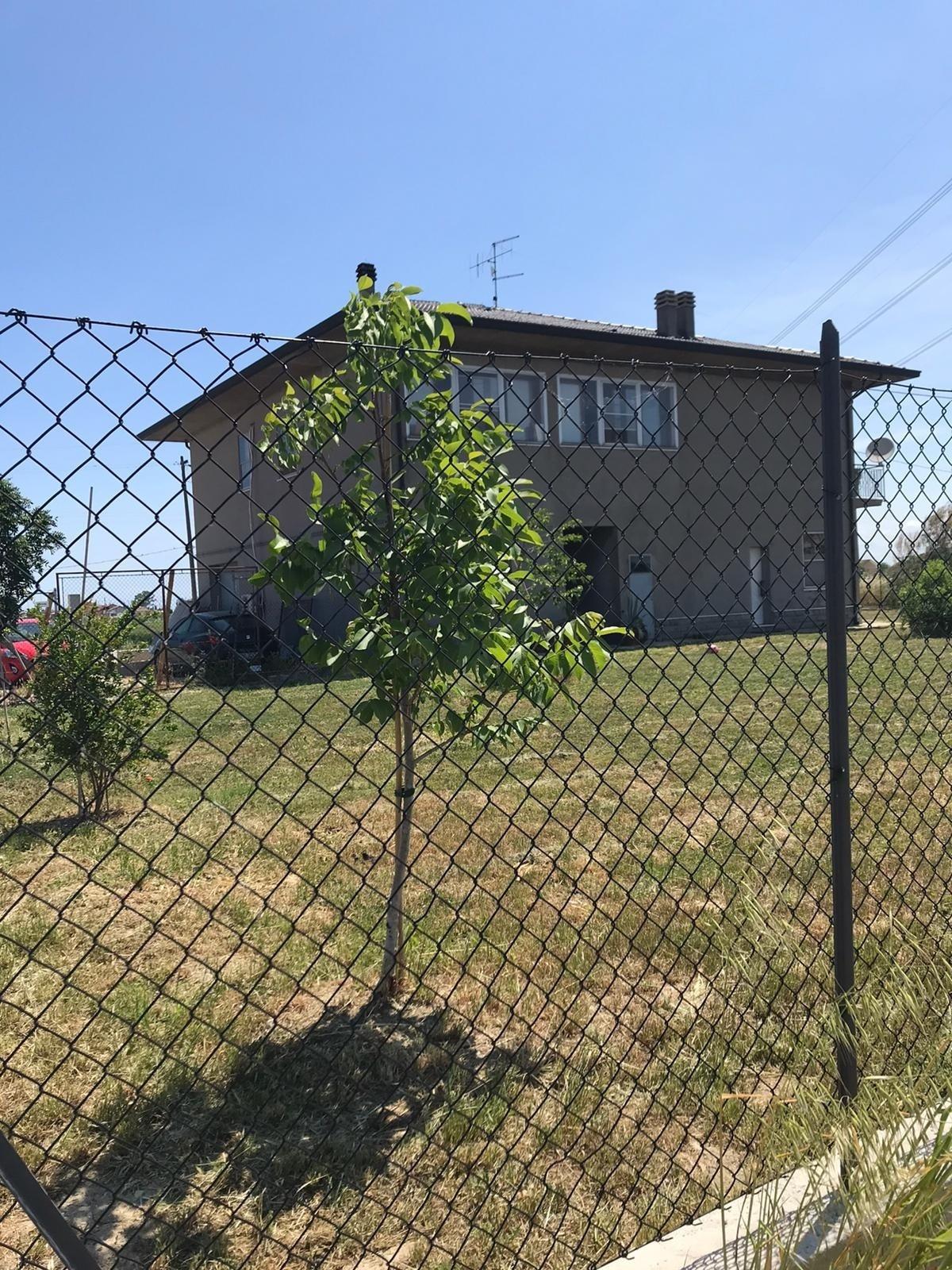 Indipendente Singola Savignano sul Rubicone casa-209