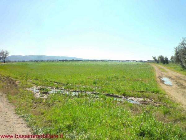 Agricolo - Seminativo a Castagneto Carducci Rif. 9373981