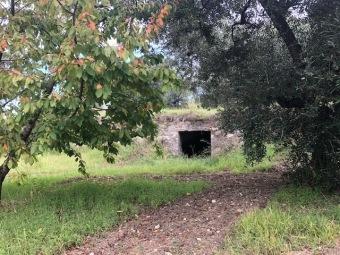 , Guidonia Montecelio