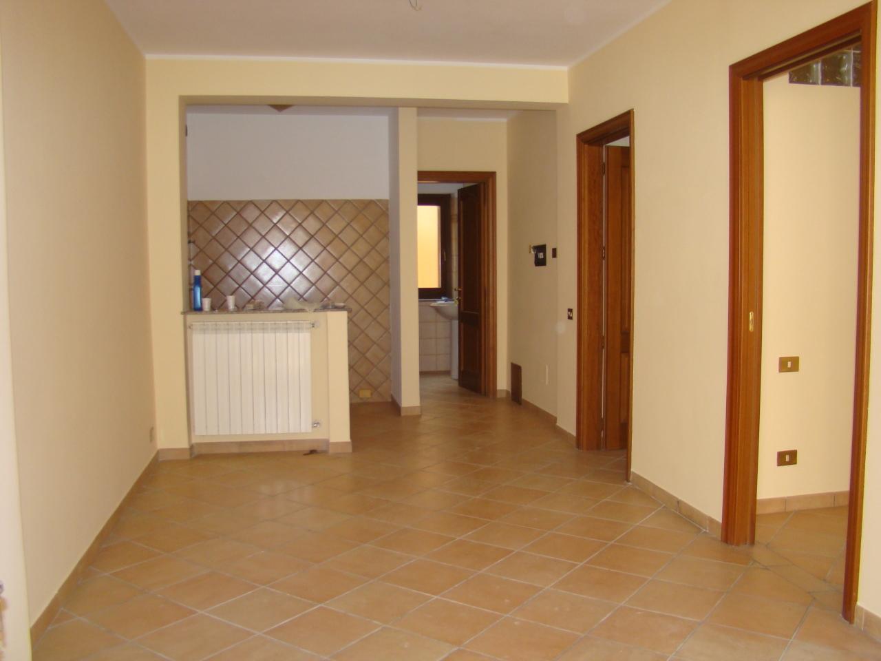 Bilocale in buone condizioni in affitto Rif. 11365553
