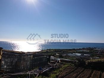 Immagine di Agricolo Area verde In Vendita Riva Ligure (IM)  non disponibile