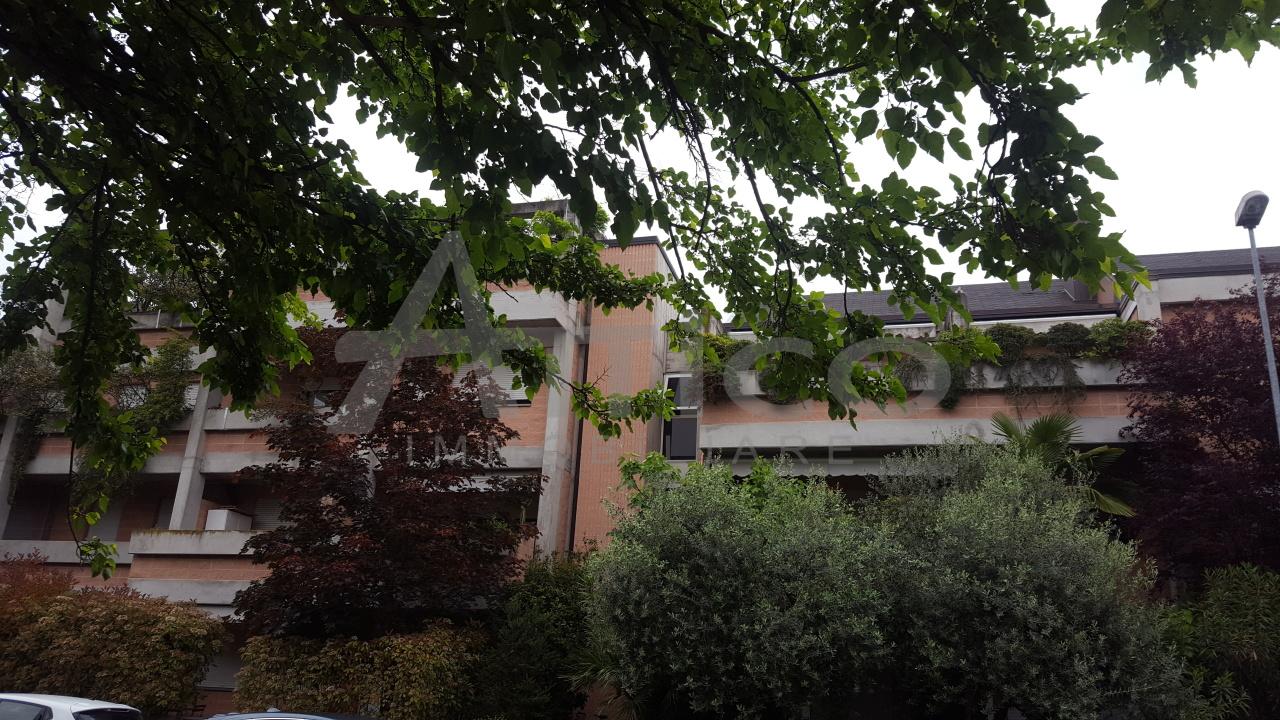 Bilocale in ottime condizioni arredato in affitto Rif. 6446593