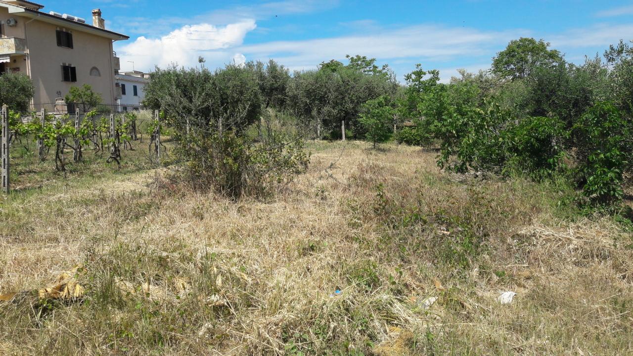 Terreno in vendita Rif. 8120756
