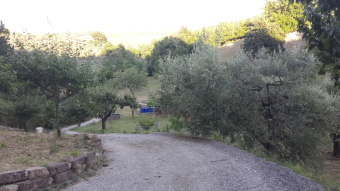 Agricolo, Morlupo