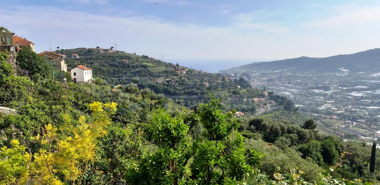 Appartamento - Bilocale a Castellaro