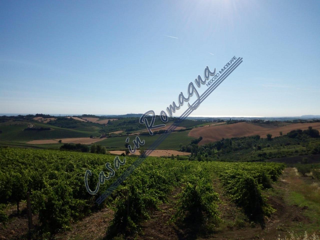 Terreno in vendita Rif. 10244785