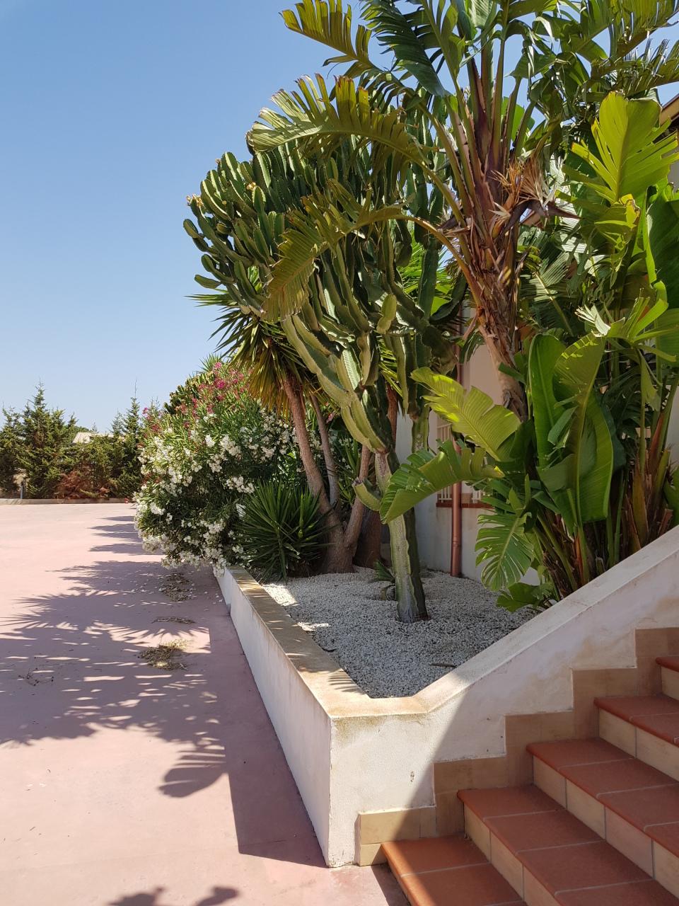 Villa in ottime condizioni arredato in affitto Rif. 9191298