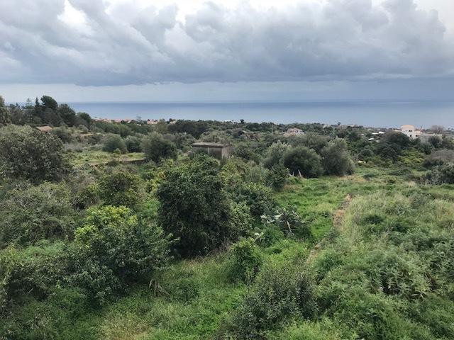Agricolo - Area verde a Aci Castello Rif. 6824324