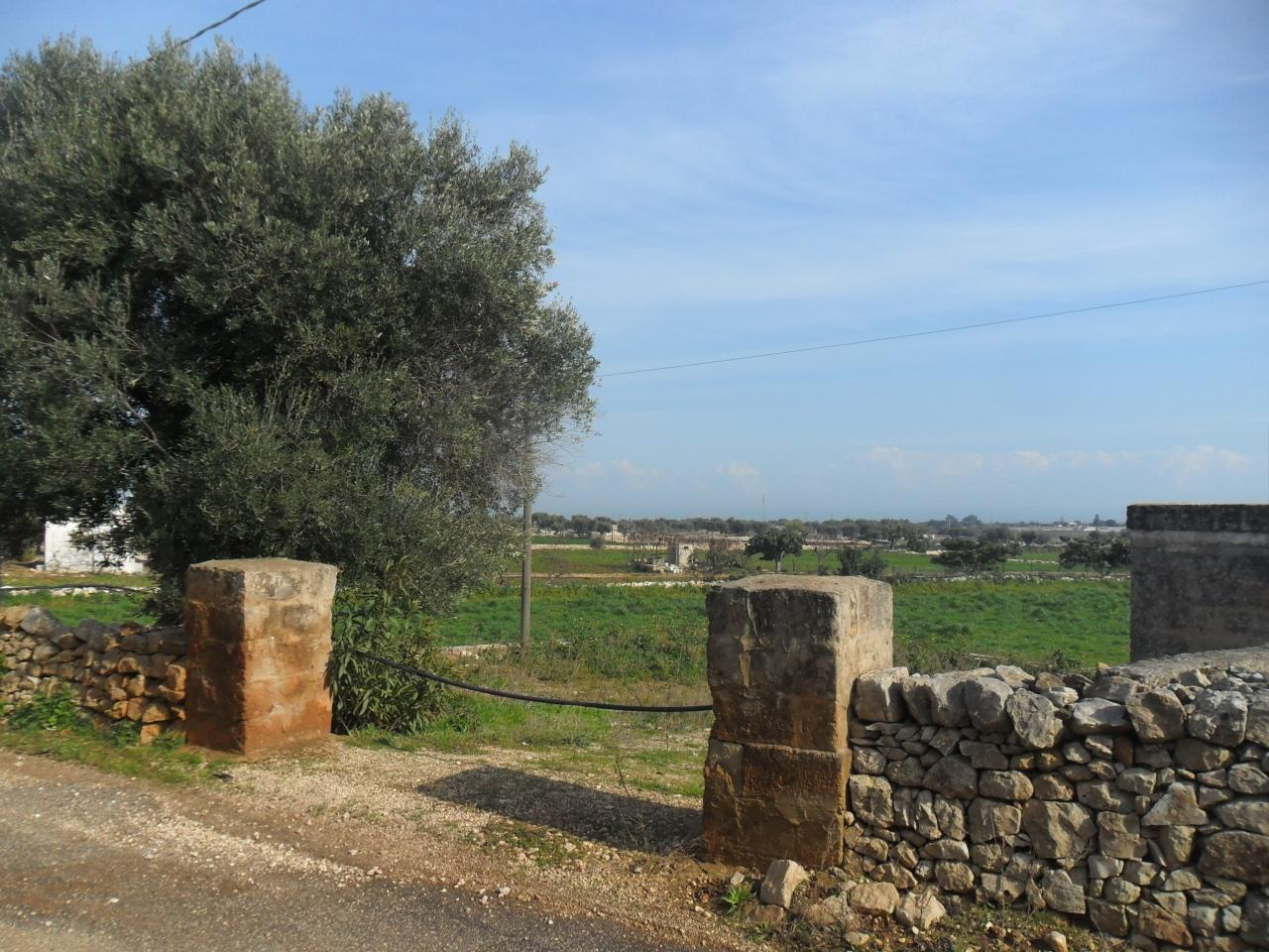 Agricolo a Polignano a Mare Rif. 9552372