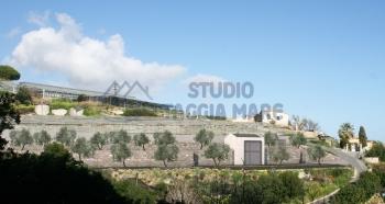 Immagine di Agricolo Prato In Vendita Riva Ligure (IM)  non disponibile