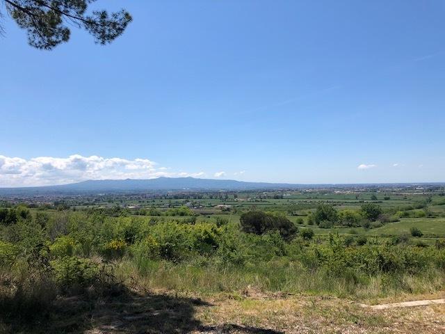 Agricolo a Guidonia Montecelio Rif. 10175022