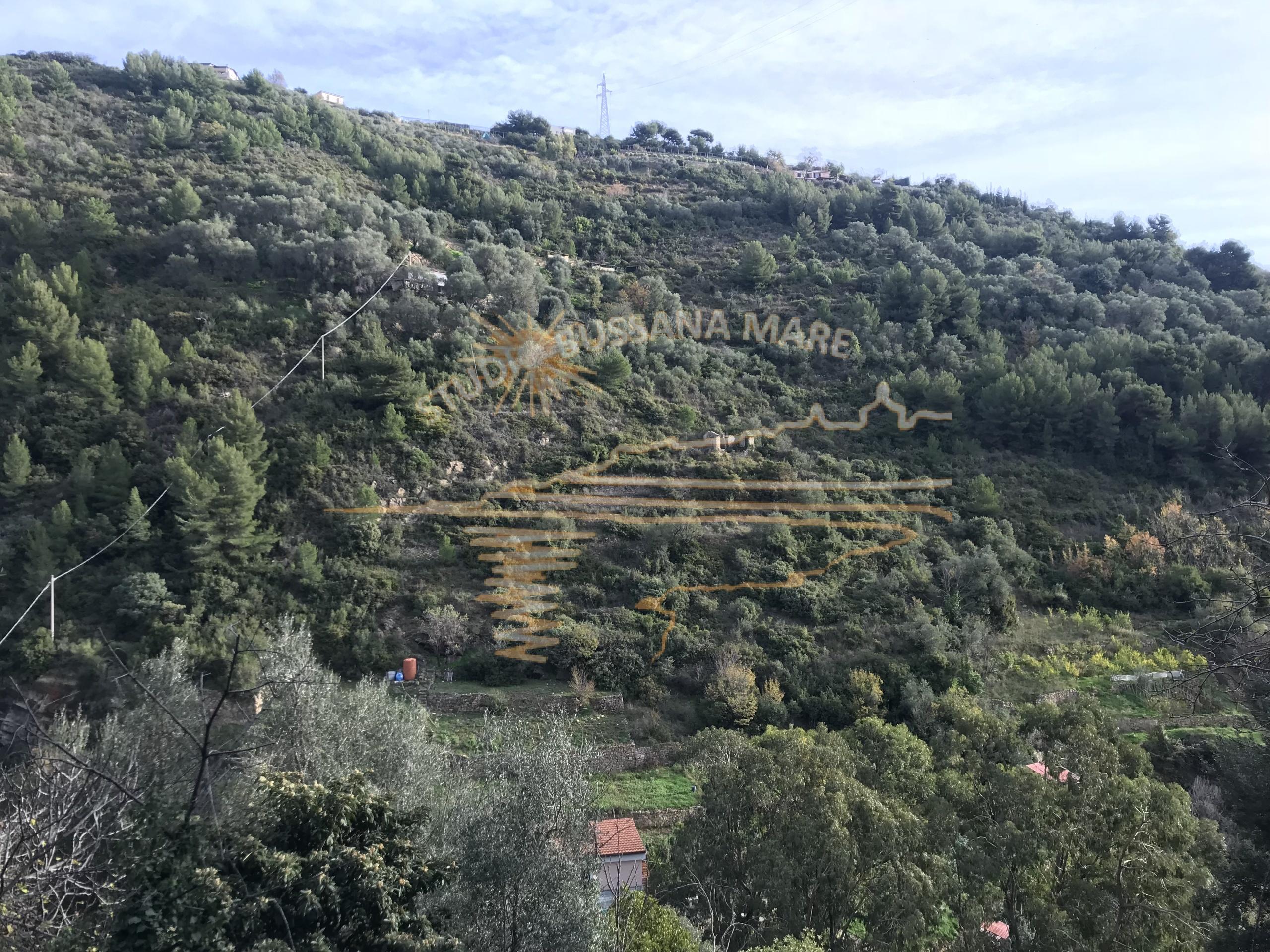 Semindipendente - Verezzo, Sanremo