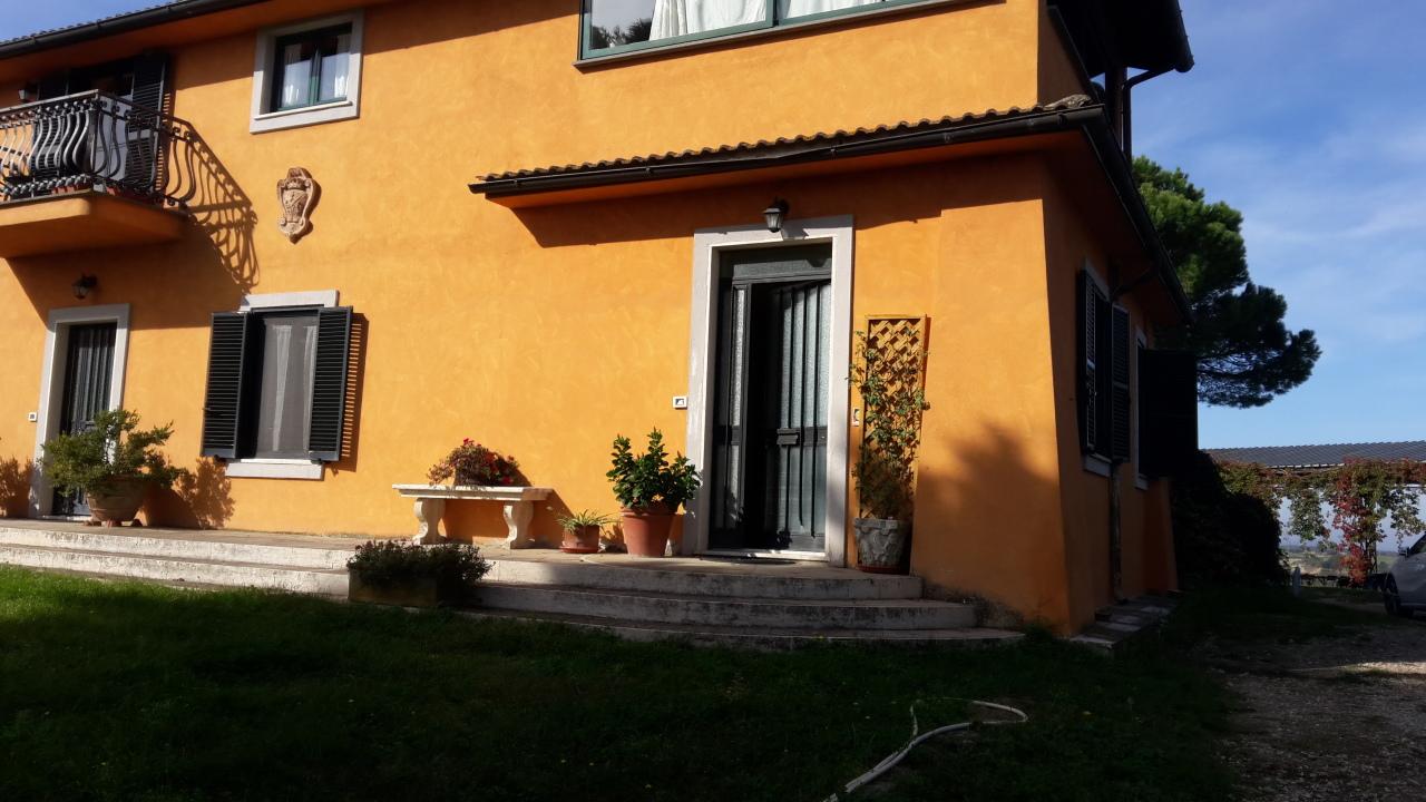 Bilocale in buone condizioni arredato in affitto Rif. 11383247
