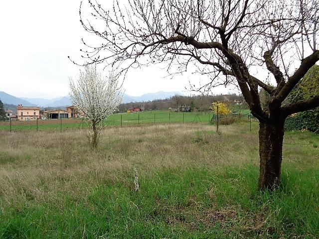 Agricolo - Area verde a Muscoline