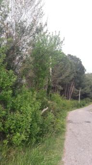 Terreno edificabile, Rignano Flaminio