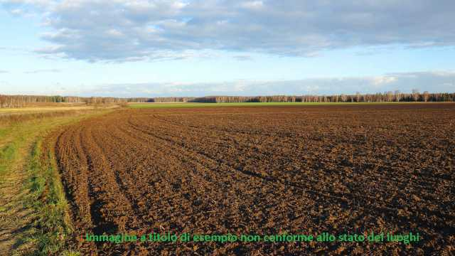 Agricolo a Guazzora Rif. 9895235