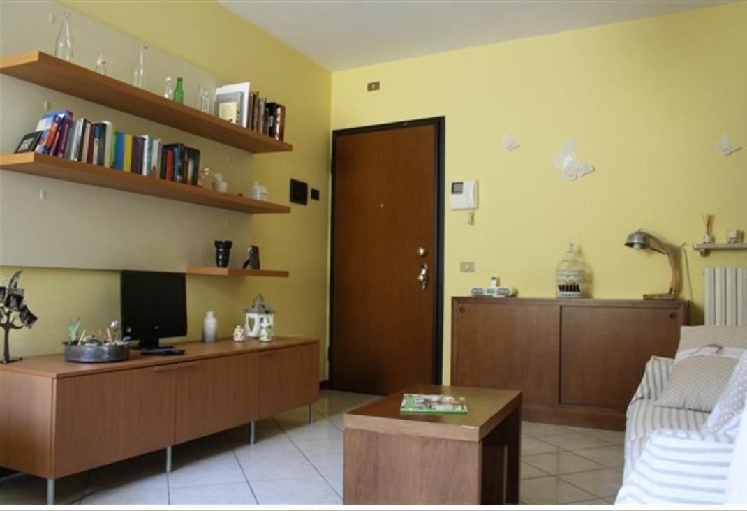 Appartamento in ottime condizioni in affitto Rif. 9998335