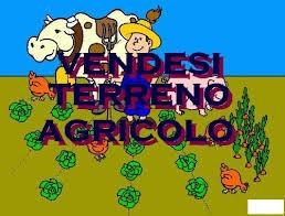 Agricolo a Bellaria-Igea Marina Rif. 9374268